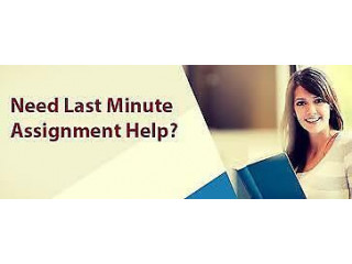 Get You Assignment Done By a Professional Tutor